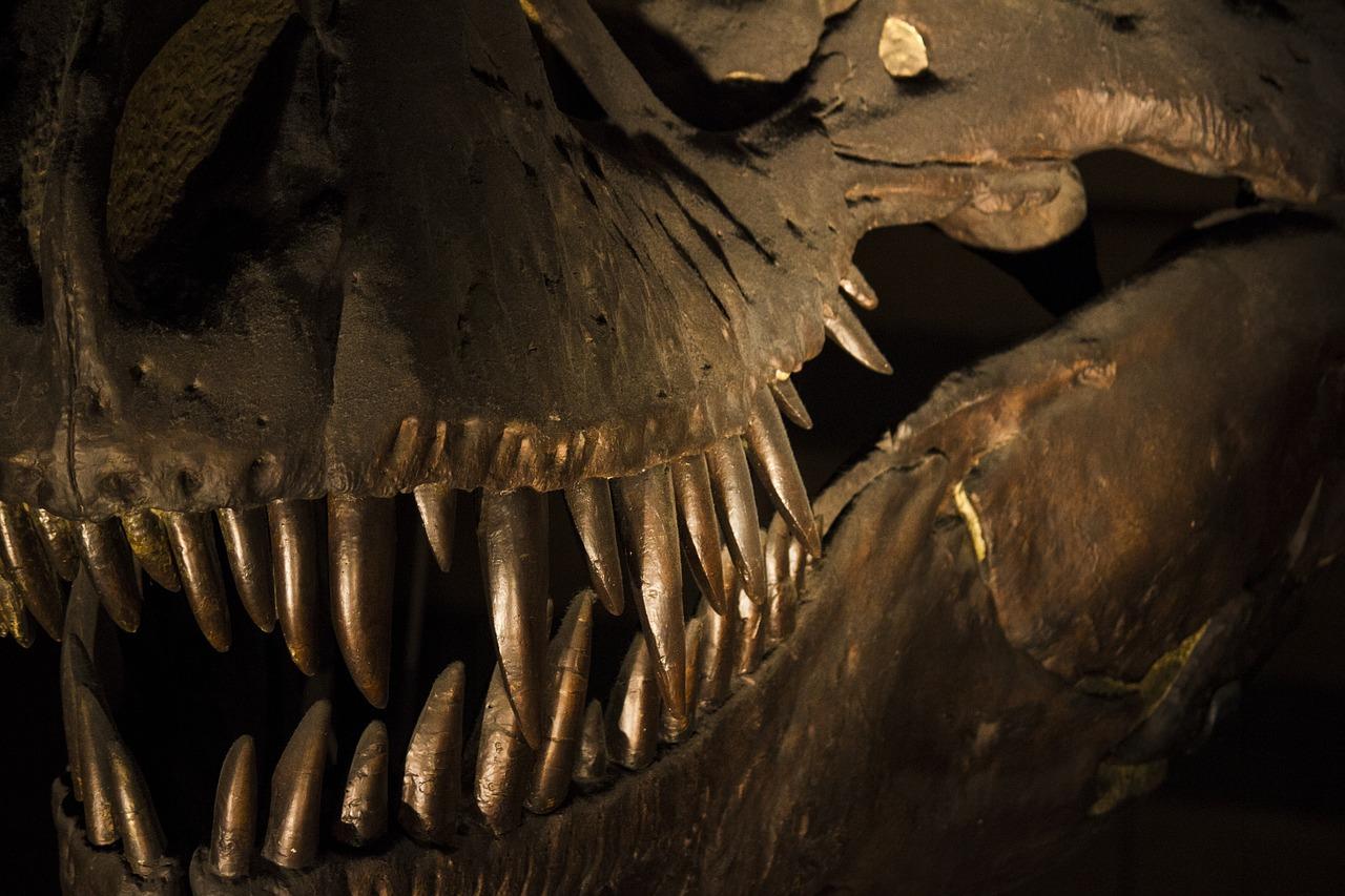 保存状態の良い胃の化石によって、一億年前の恐竜の『最後の晩餐』が ...